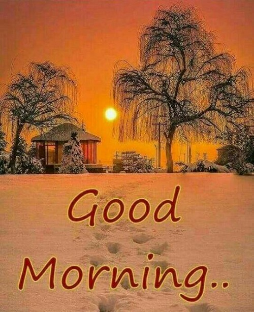 * New Good Morning Images download for Whtatsapp pictures