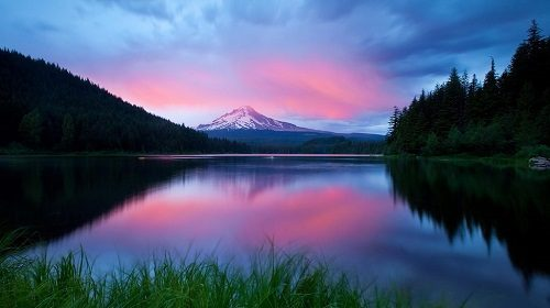 33 Beautiful Pictures Of Nature Images Download Hd Photos