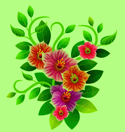 top pic of flower download for fb
