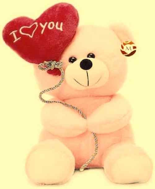 cute teddy bear image download