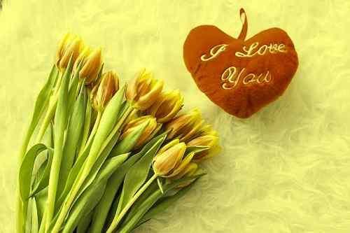 romantic love photo download