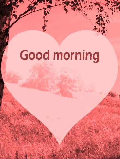 romantic couple image with good morning